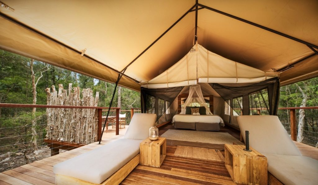 Stilted tent surrounded by trees with lounge chairs and a bed.
